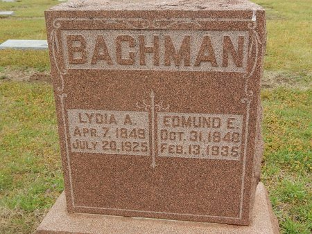 BACHMAN, LYDIA A - Kay County, Oklahoma | LYDIA A BACHMAN - Oklahoma Gravestone Photos