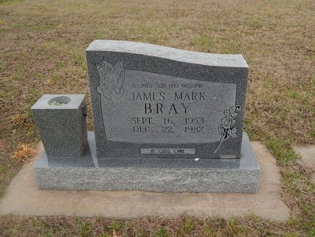 BRAY, JAMES MARK - Kay County, Oklahoma | JAMES MARK BRAY - Oklahoma Gravestone Photos