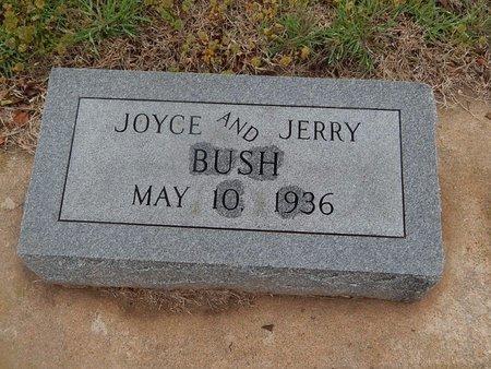 BUSH, JOYCE - Kay County, Oklahoma | JOYCE BUSH - Oklahoma Gravestone Photos