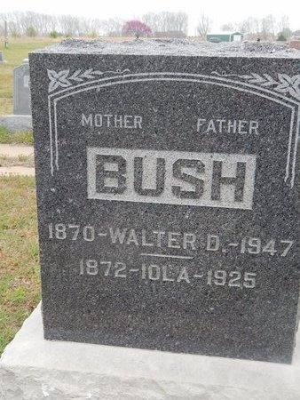 BUSH, IOLA - Kay County, Oklahoma | IOLA BUSH - Oklahoma Gravestone Photos