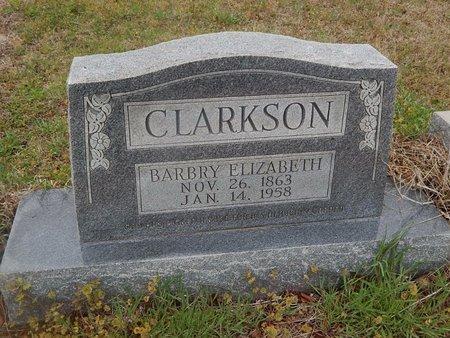 CLARKSON, BARBRY ELIZABETH - Kay County, Oklahoma | BARBRY ELIZABETH CLARKSON - Oklahoma Gravestone Photos