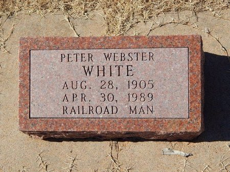 WHITE, PETER WEBSTER - Kay County, Oklahoma | PETER WEBSTER WHITE - Oklahoma Gravestone Photos