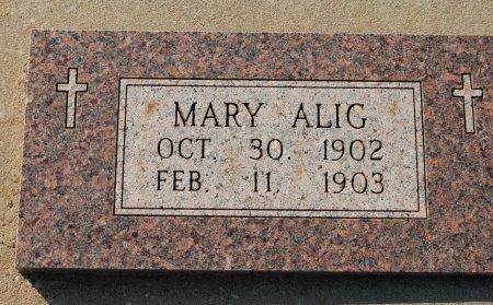 ALIG, MARY ELIZABETH - Kingfisher County, Oklahoma | MARY ELIZABETH ALIG - Oklahoma Gravestone Photos