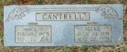 CANTRELL, JAMES A - Le Flore County, Oklahoma | JAMES A CANTRELL - Oklahoma Gravestone Photos