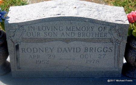 BRIGGS, RODNEY DAVID - Mayes County, Oklahoma | RODNEY DAVID BRIGGS - Oklahoma Gravestone Photos