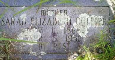 COLLIER, SARAH ELIZABETH - Mayes County, Oklahoma | SARAH ELIZABETH COLLIER - Oklahoma Gravestone Photos