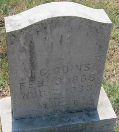 GOINS, J. C. - Mayes County, Oklahoma | J. C. GOINS - Oklahoma Gravestone Photos