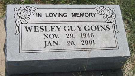 GOINS, WESLEY GUY - Mayes County, Oklahoma | WESLEY GUY GOINS - Oklahoma Gravestone Photos