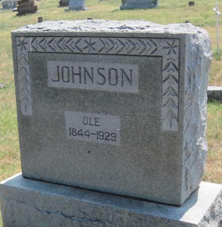 JOHNSON, OLE E - Mayes County, Oklahoma   OLE E JOHNSON - Oklahoma Gravestone Photos
