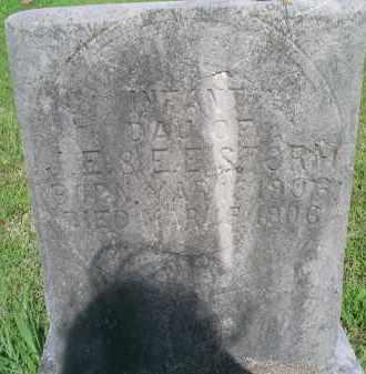 STORM, INFANT DAU. - Mayes County, Oklahoma   INFANT DAU. STORM - Oklahoma Gravestone Photos