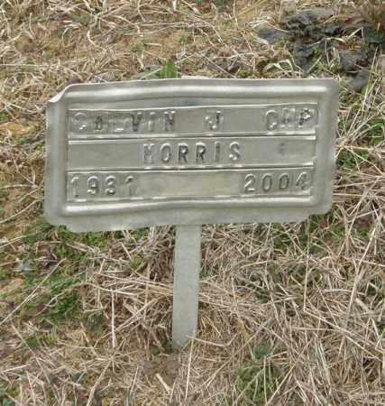 MORRIS, CALVIN J (CAP) - McCurtain County, Oklahoma | CALVIN J (CAP) MORRIS - Oklahoma Gravestone Photos