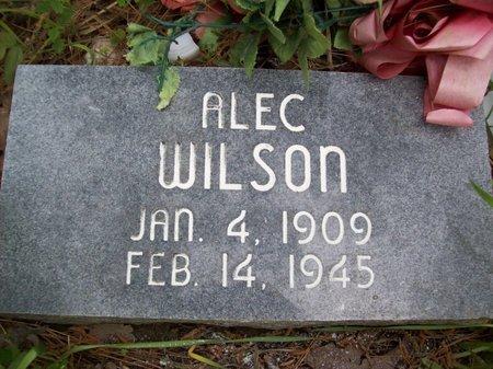 WILSON, ALEC - McCurtain County, Oklahoma | ALEC WILSON - Oklahoma Gravestone Photos