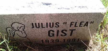 "GIST, JULIUS ""FLEA"" - Muskogee County, Oklahoma   JULIUS ""FLEA"" GIST - Oklahoma Gravestone Photos"