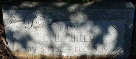 WILEY, C.W. - Muskogee County, Oklahoma   C.W. WILEY - Oklahoma Gravestone Photos
