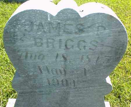 BRIGGS, JAMES P. - Nowata County, Oklahoma | JAMES P. BRIGGS - Oklahoma Gravestone Photos