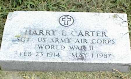 CARTER, HARRY L. - Nowata County, Oklahoma | HARRY L. CARTER - Oklahoma Gravestone Photos