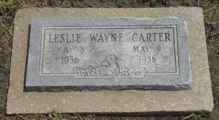 CARTER, LESLIE WAYNE - Nowata County, Oklahoma | LESLIE WAYNE CARTER - Oklahoma Gravestone Photos