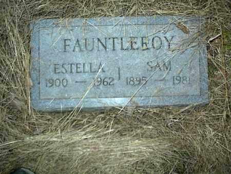 FAUNTLEROY, SAM - Nowata County, Oklahoma | SAM FAUNTLEROY - Oklahoma Gravestone Photos