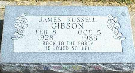 GIBSON, JAMES RUSSELL - Nowata County, Oklahoma   JAMES RUSSELL GIBSON - Oklahoma Gravestone Photos