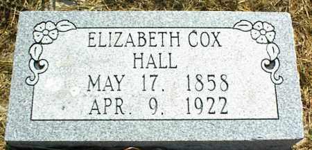 HALL, ELIZABETH - Nowata County, Oklahoma | ELIZABETH HALL - Oklahoma Gravestone Photos