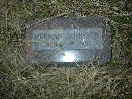 JOHNSON, HERMAN - Nowata County, Oklahoma | HERMAN JOHNSON - Oklahoma Gravestone Photos