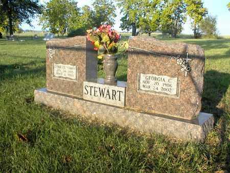 STEWART, GEORGIA C. - Nowata County, Oklahoma | GEORGIA C. STEWART - Oklahoma Gravestone Photos