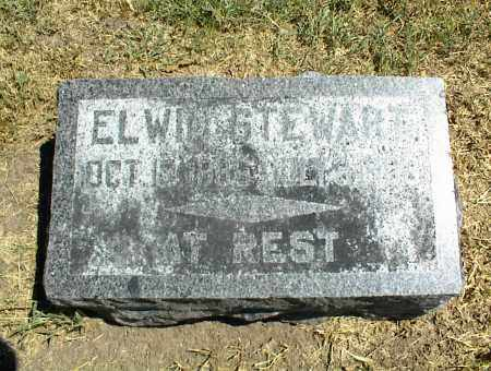 STEWART, ELWIN - Nowata County, Oklahoma | ELWIN STEWART - Oklahoma Gravestone Photos
