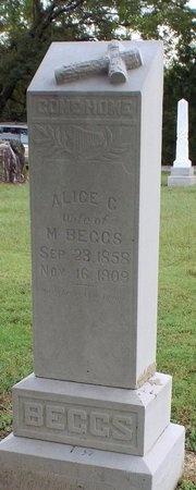 BEGGS, ALICE CLOTHILDA - Ottawa County, Oklahoma | ALICE CLOTHILDA BEGGS - Oklahoma Gravestone Photos