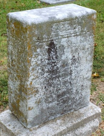 REED, ELIZA A - Ottawa County, Oklahoma   ELIZA A REED - Oklahoma Gravestone Photos