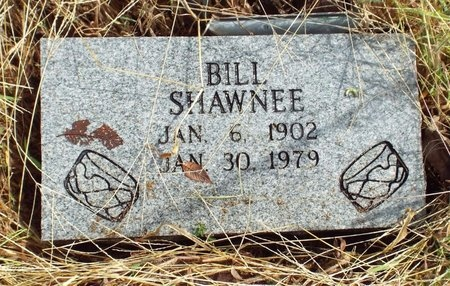 SHAWNEE, BILL - Ottawa County, Oklahoma   BILL SHAWNEE - Oklahoma Gravestone Photos