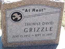 GRIZZLE, THOMAS DAVID - Pontotoc County, Oklahoma | THOMAS DAVID GRIZZLE - Oklahoma Gravestone Photos