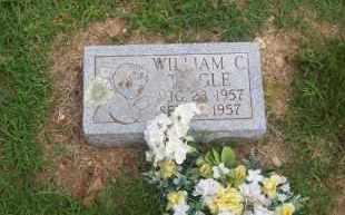 TINGLES, WILLIAM C. - Pontotoc County, Oklahoma | WILLIAM C. TINGLES - Oklahoma Gravestone Photos