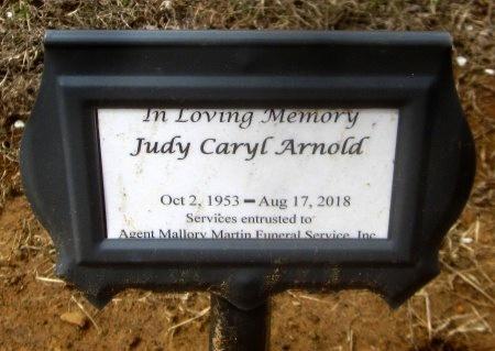 ARNOLD, JUDY CARYL - Sequoyah County, Oklahoma | JUDY CARYL ARNOLD - Oklahoma Gravestone Photos