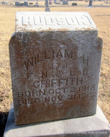GRIFFITH, WILLIAM HUDSON - Sequoyah County, Oklahoma | WILLIAM HUDSON GRIFFITH - Oklahoma Gravestone Photos