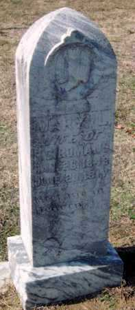 NICHOLSON ROMANS, MARY LOUELLA - Sequoyah County, Oklahoma | MARY LOUELLA NICHOLSON ROMANS - Oklahoma Gravestone Photos