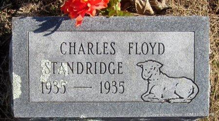 STANDRIDGE, CHARLES FLOYD - Sequoyah County, Oklahoma | CHARLES FLOYD STANDRIDGE - Oklahoma Gravestone Photos