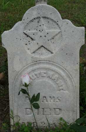 ADAMS (VETERAN), THOMAS - Tulsa County, Oklahoma | THOMAS ADAMS (VETERAN) - Oklahoma Gravestone Photos