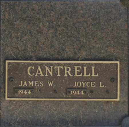 CANTRELL, JAMES W - Washington County, Oklahoma | JAMES W CANTRELL - Oklahoma Gravestone Photos