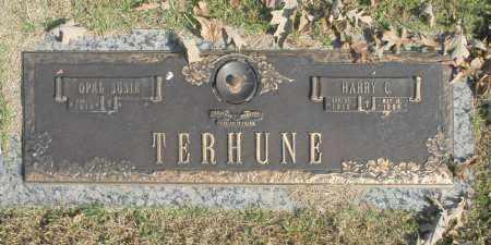 TERHUNE, HARRY C - Washington County, Oklahoma   HARRY C TERHUNE - Oklahoma Gravestone Photos