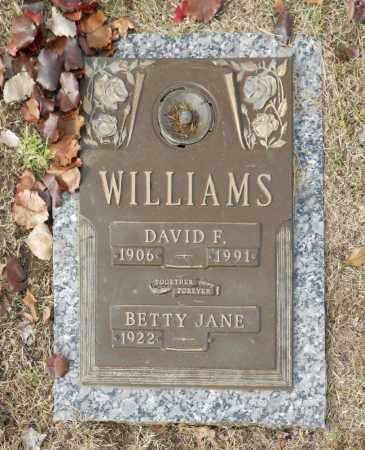WILLIAMS, DAVID F - Washington County, Oklahoma | DAVID F WILLIAMS - Oklahoma Gravestone Photos