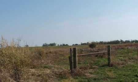 *KERNS, *OVERVIEW - Washita County, Oklahoma   *OVERVIEW *KERNS - Oklahoma Gravestone Photos