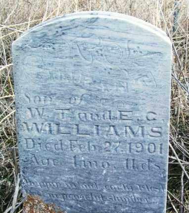 WILLIAMS, INFANT - Washita County, Oklahoma   INFANT WILLIAMS - Oklahoma Gravestone Photos