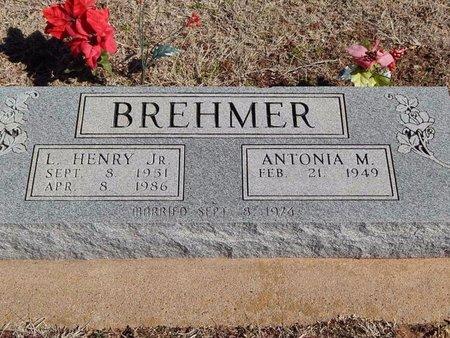 BREHMER, L HENRY JR - Woods County, Oklahoma | L HENRY JR BREHMER - Oklahoma Gravestone Photos