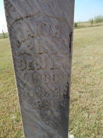 ERTMOED, MARTHA L - Woods County, Oklahoma | MARTHA L ERTMOED - Oklahoma Gravestone Photos