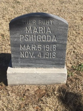 PSHIGODA, MARIA - Woods County, Oklahoma | MARIA PSHIGODA - Oklahoma Gravestone Photos