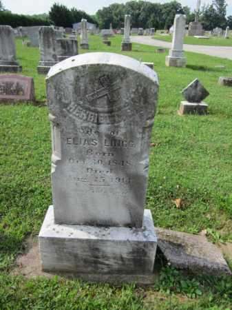 LINGG, HENRIETTA - Adams County, Pennsylvania | HENRIETTA LINGG - Pennsylvania Gravestone Photos