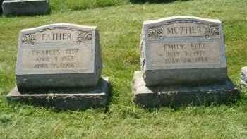 PFAFF FITZ, EMILY - Allegheny County, Pennsylvania | EMILY PFAFF FITZ - Pennsylvania Gravestone Photos