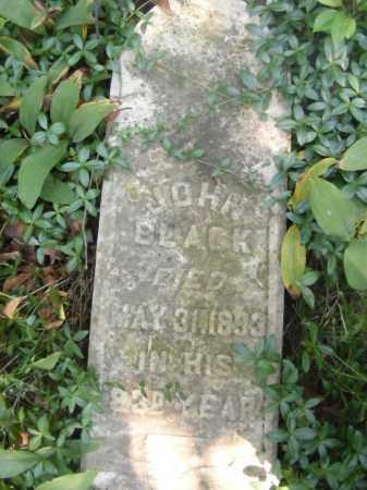 BLACK, JOHN - Beaver County, Pennsylvania   JOHN BLACK - Pennsylvania Gravestone Photos
