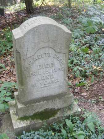 CRAIG, ELIZABETH - Beaver County, Pennsylvania | ELIZABETH CRAIG - Pennsylvania Gravestone Photos