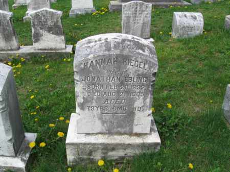 BLING, HANNAH - Berks County, Pennsylvania | HANNAH BLING - Pennsylvania Gravestone Photos